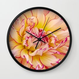 Pink Dahlia with Bright Pink tips Close Up Detail Wall Clock