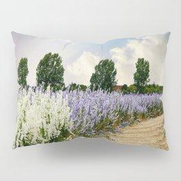 Coloured Landscape Pillow Sham