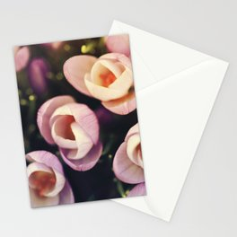 Crocus Field Stationery Cards