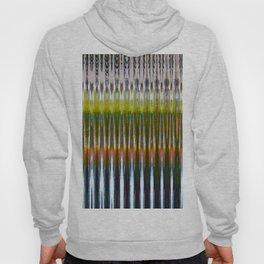 Colorful Reverberations Hoody