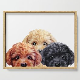 Toy poodle trio, Dog illustration original painting print Serving Tray