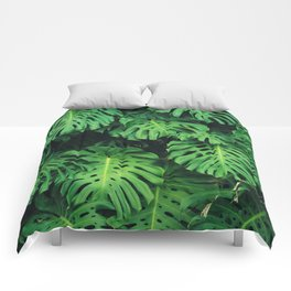 Monstera leaf jungle pattern - Philodendron plant leaves background Comforters