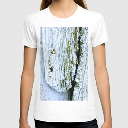 Weathered Barn Wall Wood Texture T-shirt
