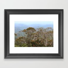 Australiana No. 3 Framed Art Print