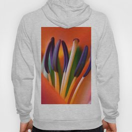 Lily 11 Hoody