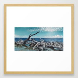 Jekyll Island Driftwood Beach Framed Art Print