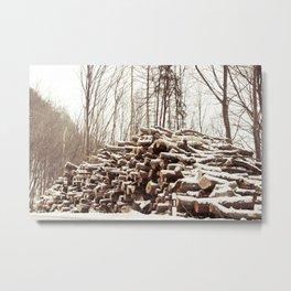 dead forest Metal Print