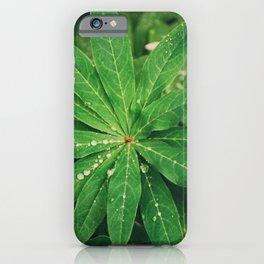 Raindrops under rain iPhone Case