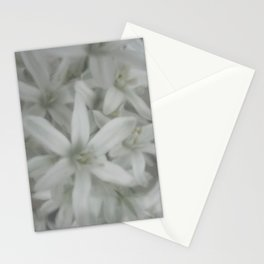white and grey Stationery Cards