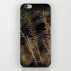 Grass Of Circles iPhone & iPod Skin