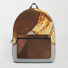 Cluster of lightened leaves Backpack