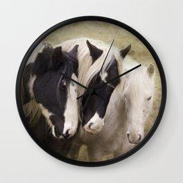 Gypsy cobs Wall Clock