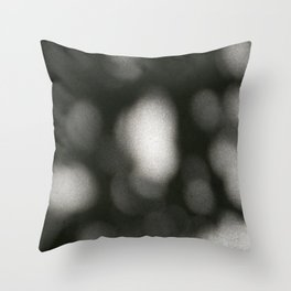 Stonelit Throw Pillow