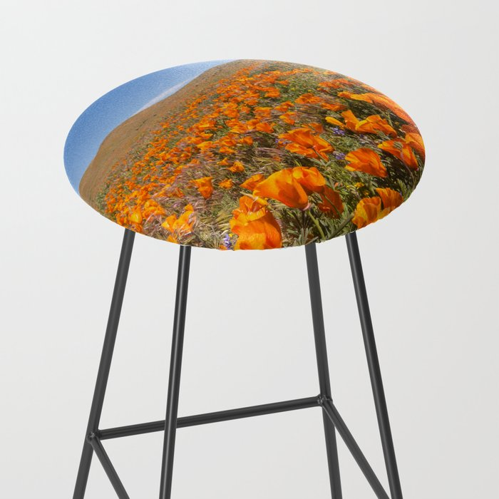 Blooming poppies in Antelope Valley Poppy Reserve Bar Stool