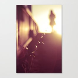 In The Light Of The Sun Canvas Print