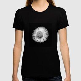 Fleabane B and W T-shirt
