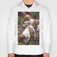 puppies Hoodies featuring Puppies In The Garden by Samantha Georga