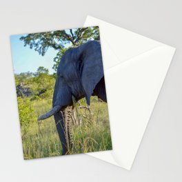 Elephant Eating Stationery Cards