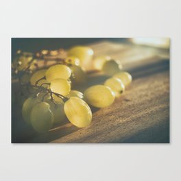 Food. Fruit. Summer grapes Canvas Print