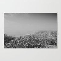san diego Canvas Prints featuring San Diego by Jessica Milligan