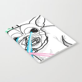 DESTROY Notebook