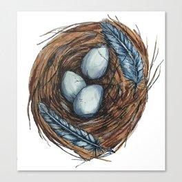 Blue Bird Nest Canvas Print