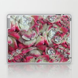 Red Succulent Fractal Laptop & iPad Skin