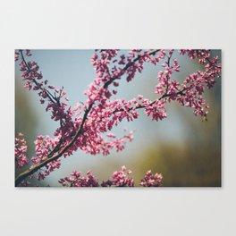 positive vibes Canvas Print