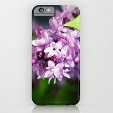 fresh lilacs Slim Case iPhone 6s