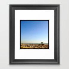 Those are birds. Millions of birds. Framed Art Print