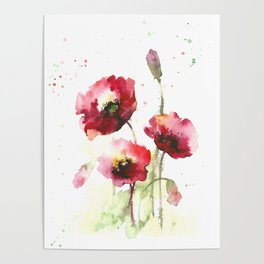 Watercolor flowers of poppy Poster
