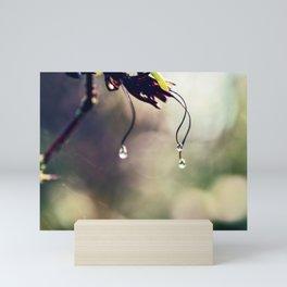 Water Droplets Mini Art Print