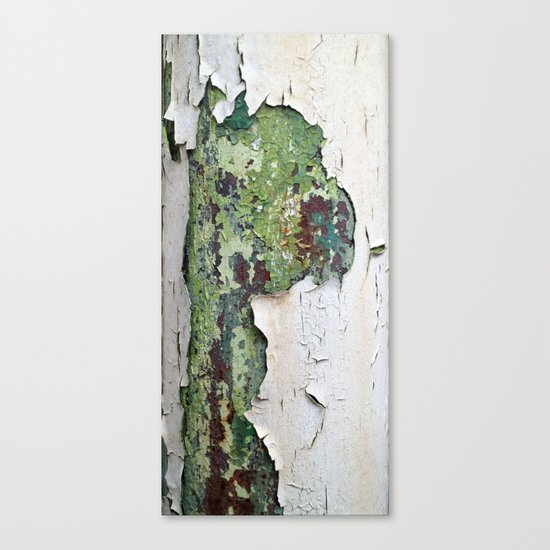 white green paint rust metal texture pattern Canvas Print