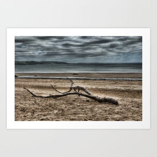 Driftwood 4 Art Print