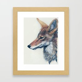 Coyote Anubis Framed Art Print