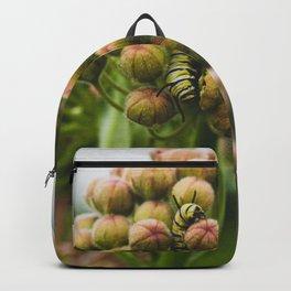 Monarch Caterpillar Backpack