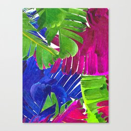 Colorful tropical leaves Canvas Print