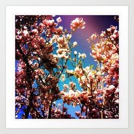 Hold On Magnolia Art Print