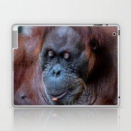 Portrait of a female orangutan Laptop & iPad Skin