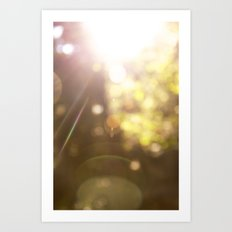 Sunspots Art Print