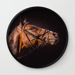 Horse portrait over a dark background. Closeup Horse Head. Wall Clock