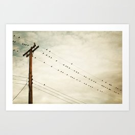 Birds on Wire, Beige Brown Bird on Wires, Neutral Modern Telephone Nature Art Art Print