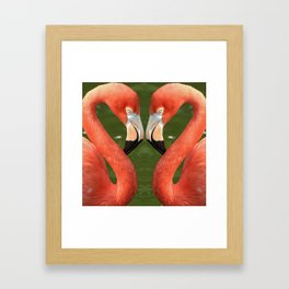 Flamingo_20170701_by_JAMFoto Framed Art Print
