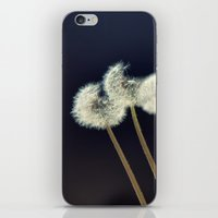 coconut wishes iPhone & iPod Skins featuring {wishes} by Patti Toth McCormick