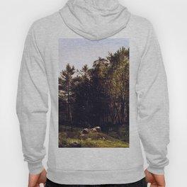 A Study Near Tamworth New Hampshire 1863 By David Johnson | Reproduction | Romanticism Landscape Pai Hoody