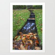 Autumn Waters Art Print