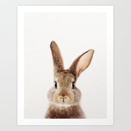 Baby Rabbit, Brown Bunny, Baby Animals Art Print By Synplus Art Print