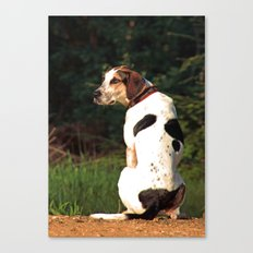hound dog Canvas Print