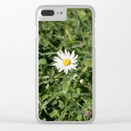 lonely flower, color photograph Clear iPhone Case