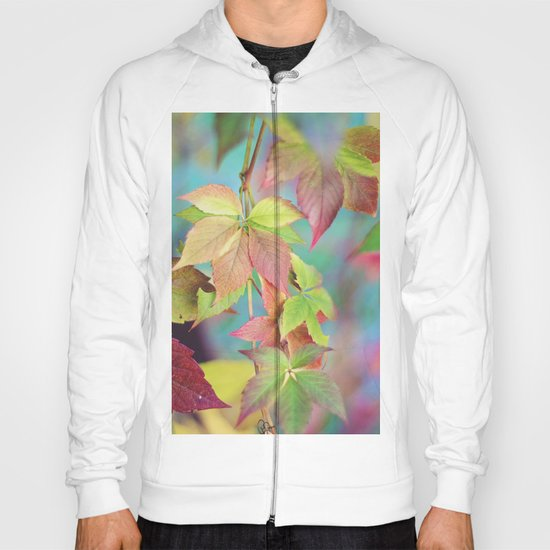 Colorful fall Hoody
